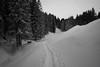 s n o w (Toni_V) Tags: m2402820 rangefinder digitalrangefinder messsucher leica leicam mp typ240 28mm elmaritm elmaritm12828asph snow snowshoeing schneeschuhwanderung schneeschuhlaufen winter schwyz halsegg wildspitz rossberg trail landscape switzerland schweiz suisse svizzera svizra europe ©toniv 2017 170107 blackwhite bw schwarzweiss monochrome