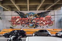 Nychos (mike ion) Tags: sp saopaulo sãopaulo brazil brasil graffiti streetart mural artederua nychos