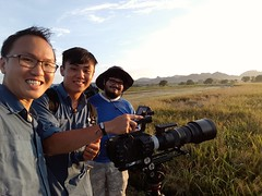 Breathtaking taking views at paddy field in langkawi. #documentary