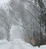Winter Winds (chantsign) Tags: winter abstract impressionist gray street road snowcovered displacement
