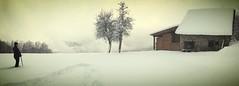 Snowshoes stroll (Mist&Light) Tags: saintmartinduriage isère belledonne snowshoes raquettes alpes alps