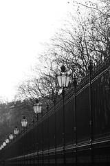 Lantern (désign) Tags: lantern light lights line licht lamp city structure stadt street stone stein streetlight strasse still row round fence tree strassenlampe shadow shape vanishing view vanish verschwinden curve focus black blackandwhite bw white schatten schwarz schärfentiefe schwarzweiss weiss silhouette vienna wien hofburg