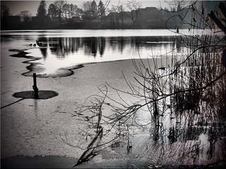 Winter mood at the lake Poenitz