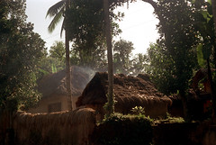 25-339 (ndpa / s. lundeen, archivist) Tags: trees roof bali color building film wall 35mm buildings indonesia village smoke nick roofs 25 southpacific thatchedroof 1970s 1972 indonesian balinese dewolf oceania pacificislands thatchroof nickdewolf photographbynickdewolf reel25