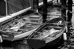 Row boats (davidboyett285) Tags: california people blackandwhite bw usa water canon boats harbor boat blackwhite row rowboat greatphotographers flickrsbest anawesomeshot amazingamateur bestofflickrsbest searchthebestnew
