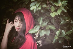 Red riding hood 2015 (Duong Anh Lai Studio) Tags: red riding hood b c 2015  khn qung