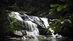 PantherCreekFalls (polky222) Tags: nature creek forest swim falls waterfalls wilderness panther forests swimminghole northgeorgia cohutta cohuttawilderness panthercreekfalls