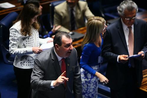 Plenário do Senado - Votação Projeto de Lei n. 277 de 2014