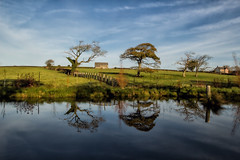 Morning Reflections (Mark Wasteney) Tags: reflections pond sky trees northdevon westcountry blue canon100d canon16mm35mmf28 water