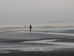Silver tide (Milou Diable) Tags: gormley anthonygormley sculpture figures silhouette silhouettes beach seaside sunset sunrise goldenhour liverpool crosby anotherplace sea