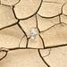 DSC02467 - NAMIBIA 2010   Kunst?