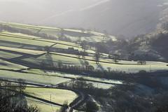 Frosty fields (Keartona) Tags: countryside fields frosty winter morning sunlight view patchwork green beautiful scenery hayfield derbyshire peakdistrict england trees