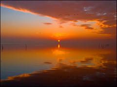Des Morgens am Steinhuder Meer (angelofruhr) Tags: sonnenaufgang