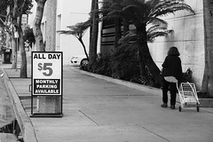 (Casey Lombardo) Tags: longbeach longbeachca streetphotography streets woman walking walker parking allday signs signage bw bwphotography blackandwhite monochrome monochromatic bwstreetphotography ferns sidewalk