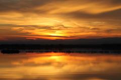 Enchating Sunset (rromanivna) Tags: sunset nature spain valencia red yellow orange albufera albuferadevalencia nationalpark park españa atardecer sol colores humedal wetland lugoon laguna