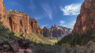*Zion National Park*