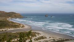 423 - Sandfly Bay à Otago Peninsula