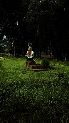 Pensamento! (JF. Pasturczak) Tags: brasilemimagens pensamento verde menina moça luz escadas pensar voando flroesta