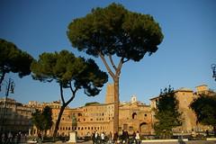 Rome 2010 1018