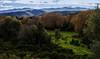 OSTRICONI CORSICA (cremona daniel) Tags: arbres eau reflet tourisme terre yeux ile paysages photos soleil dazur france flickr geographic hiver jardin flckr lumiere montagne corse corsica bleu