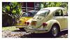 17_02_05_104p (2) (Quito 239) Tags: volkswagen 1971volkswagen 1971volkswagensuperbeetle superbeetleconvertible vw bug vocho escarabajo puertorico haciendaigualdad volky