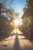 The Sun (aludatan) Tags: random sun light sunlight amateur japan kyoto uji travel streetshot street 旅行 隨機 太陽