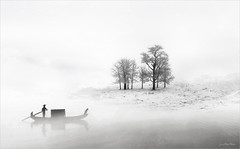 White (Jean-Michel Priaux) Tags: paysage landscape winter poetry white snow cold tree trees photoshop unreal surreal painting mattepainting ice clean basic dream fog mist myst he