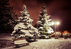 The cold weight on my limbs (Anthony P26) Tags: category eskisehir landscape nightscenes places snow turkey yunusemrecampus canon1585mm canon70d canon winter night dark darkness pinetree christmastree lightstars bench wood lamp path outdoor cold freezing frozen wow