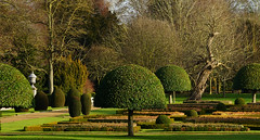The parterre at Wimpole on a sunny winter's day (Jayembee69) Tags: wimpole wimpolehall nt nationaltrust cambs cambridgeshire uk unitedkingdom england statelyhome garden parterre topiary green 18thcentury