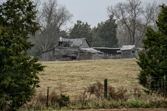Barn - Anderson S.C. (DT's Photo Site - Anderson S.C.) Tags: canon 70200mmf4l lens 6d rural country road barn farming farm vanishing vintage rustic landscape south southern