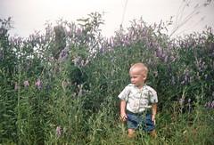 Chuck in vetch KY June 1955.jpg (buddymedbery) Tags: years 1955 family kentucky unitedstates 1950s chuck