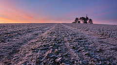 Frozen sunrise (Gamma5200) Tags: aisne evergnicourt gel levédesoleil paysage puit frost sunrise france