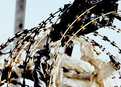 Les Fleurs du Capitalism (PuzzleMonkey!) Tags: city urban abstract black art abandoned industry metal photoshop fence southafrica rust dof metallic decorative political ruin rusty capetown litter plastic rusted rubbish bleak suburbs isolation desaturated waste civilisation consumerism prohibited milnerton symbolic repeat razorwire desolation incongruous savage artisitic exclusion westerncape repeating shred tableview photoshopart unbalanced heavyhanded sociopolitical discriminate uncivilised repeatingelements antipoor bladewire fruitsofcapitalism