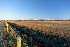 White Capped Mountains (Jocey K) Tags: trees light newzealand sky snow mountains sunrise fence landscape frost farmland southisland midcanterbury canterburyhighcountry