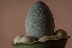 Etched Swan Egg-1807 (RG Rutkay) Tags: muteswan art egg engraved etched swan softbox strobe pysanka easter