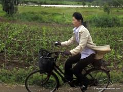 North Hamgyong Province 6