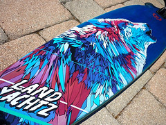 (DANI BLÁZQUEZ) Tags: bear color geometric animal illustration digital ink oso graphicdesign graphics wolf drawing board wheels deck skate longboard skateboard draw inking ballpen landyachtz