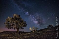 Milky Way (Carlos J. Teruel) Tags: nikon murcia le cielo nocturnas milkyway 1835 vialactea nikon1835 xaviersam carlosjteruel d800e nikonafsnikkor1835mmf3545ged