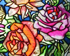 Illuminated Roses (BKHagar *Kim*) Tags: flowers roses flower glass floral rose ed bright decorative sunny illuminated gift sunshineonacloudyday bkhagar