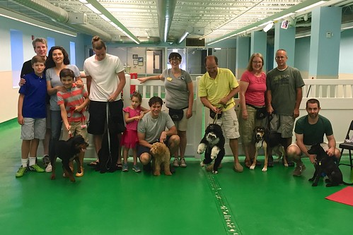 """Puppy Head Start, Session H, Summer 2015-Sat; Class photo 1 • <a style=""""font-size:0.8em;"""" href=""""http://www.flickr.com/photos/65918608@N08/20182061330/"""" target=""""_blank"""">View on Flickr</a>"""