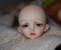_DSC9464 (olesyagavr) Tags: choco dollzone