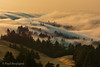 Mount Tamalpais (Paul Rescigno) Tags: fog mt mount mountain tam tamalpais bayarea mill valley california hills slopes clouds