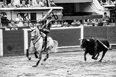 Pablo Hermoso De Mendoza (Tim L Lowe) Tags: cali colombia corridadetoros feriadecali pablohermosodemendoza