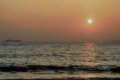 9/365 (Daegeon Shin) Tags: d4 nikon sigma 70200 70200os sunset atardecer sun sol sky cielo mar sea ola wave reflection reflejo beach playa busan corea korea 니콘 시그마 일몰 황혼 석양 태양 해 하늘 바다 water agua 파도 반영 해변 해수욕장 다대포해수욕장 부산