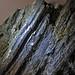 Fault slickensides (Biwabik Iron-Formation, Paleoproterozoic, ~1.878 Ga; Thunderbird Mine, Mesabi Iron Range, Minnesota, USA) 5