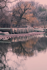 Alluring Reflection On Lake At Boathouse In Central Park - Winter Season 2016-2017 (nrhodesphotos(the_eye_of_the_moment)) Tags: dsc0136072 winterseason20162017innyc centralpark nyc manhattan season winter reflections shadows outdoor lake plantlife waterfront texture