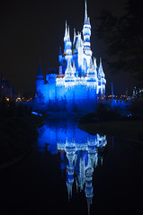 Cinderella's Castle - Magic Kingdom (fisherbray) Tags: fisherbray usa unitedstates florida orangecounty orlando baylake disney waltdisneyworld wdw disneyworld nikon d5000 magickingdom themepark night cinderellascastle