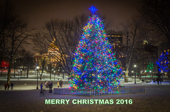 MERRY CHRISTMAS (jlucierphoto) Tags: christmas tree boston massachusetts snow lites holiday people places statehouse trees star