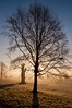 Tree Silhouette (Baker_1000) Tags: 2016 bristol ashtoncourt sunrise dawn morning firstlight frost winter fog nikond90 nikon d90 raw