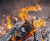 """Winter Season (Getting Some Warmth From Heat From Fire Burning In Metal Urn In Manhattan) (nrhodesphotos(the_eye_of_the_moment)) Tags: dsc624972 """"theeyeofthemoment21gmailcom"""" """"wwwflickrcomphotostheeyeofthemoment"""" winterseason2014innyc season manhattan nyc outdoor texture fire heat wood log charring ashes urn flame hot swirling"""
